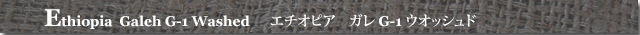 エチオピアガレG-1ウオッシュド